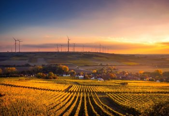 Gaining a Business Advantage by Aligning to ESG